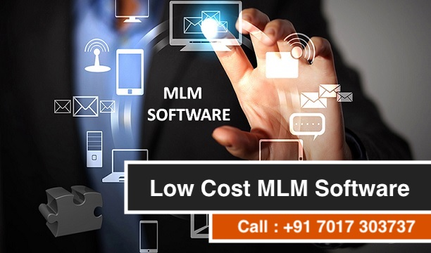 Low cost MLM Software Development Company in Ludhiana