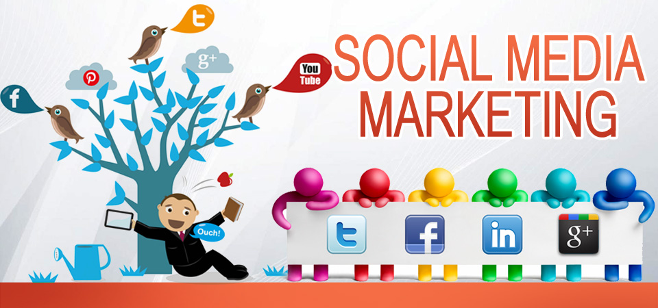 Social Media Promotion in Palm bay